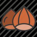 autumn, chestnut, food, thanksgiving icon