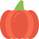 food, dinner, holiday, thanksgiving, pumpkin icon