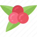 food, dinner, holiday, thanksgiving, berries icon