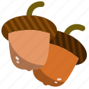 acorn, autumn, fall, nut, oak, seed icon