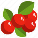 autumn, berry, farming, fruit, harvest, nature icon