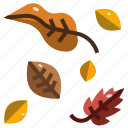 autumn, dry leaves, fall, garden, leaf, nature, season icon