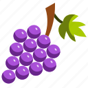 farming, fruit, grape, wine icon