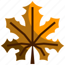 autumn, dry, fall, leaf, maple, nature icon
