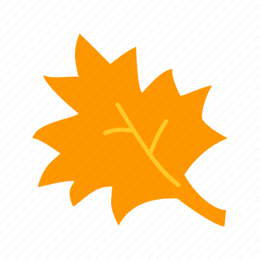 autumn, fall, leaf, leaves, maple, thanksgiving, yellow icon