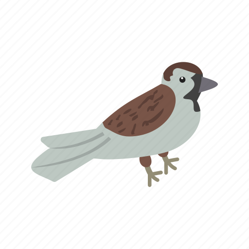 beautiful, bird, card, cute, pretty, sparrow, thanksgiving icon