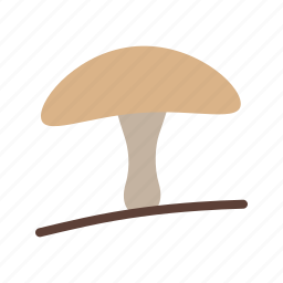 food, gourmet, healthy, mushroom, organic, oyster icon