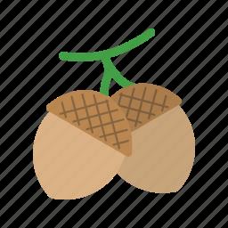 acorn, brown, nature, nut, oak, seeds, tree icon