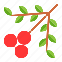 abundant, berry, fruit, thanksgiving icon