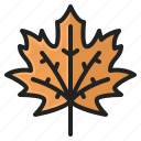 autumn, fall, leaf, maple, season, thanksgiving, tree icon