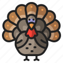 animal, bird, chicken, thanksgiving, turkey icon