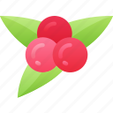 berries, dinner, food, holiday, thanksgiving icon