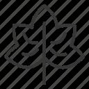 autumb, leaf, maple, thanksgiving icon