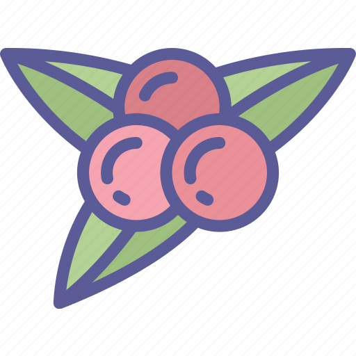 Berries, dinner, food, holiday, thanksgiving icon - Download on Iconfinder
