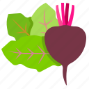 beetroot, fresh, vegetables, vegetarian icon