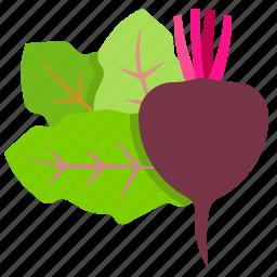 beetroot, fresh, vegetables, vegetarian icon
