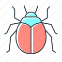 beetle, bug, error, virus, web icon