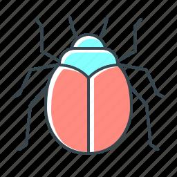 beetle, bug, error, virus, web icon