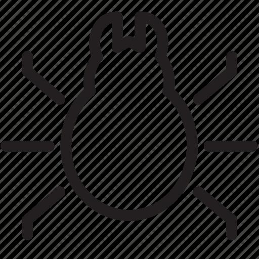 animal, bug, code, error, insect, warning icon