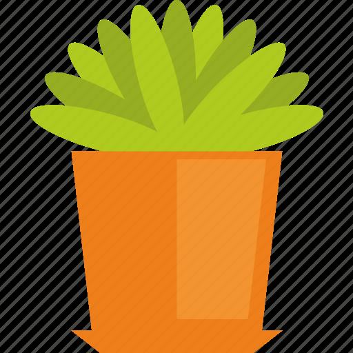 garden, nature, plant icon