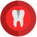 caries, health, illness, implant, stomatology, tooth, tooth implant icon