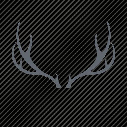 animal, deer, horns, hunting icon