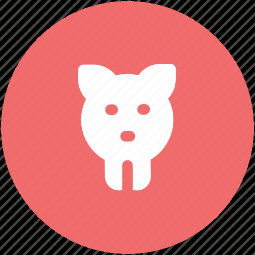 bank, finances, money, pig, pig head, piggy, piggy bank, save icon