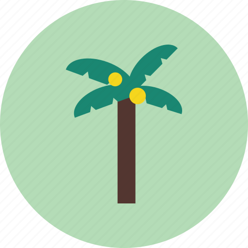 ecology, forest, nature, palm tree, plant, vacation icon