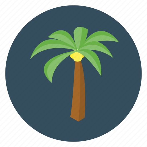 fun, holiday, palm, palm tree, transportation, travel, tree, vacation icon