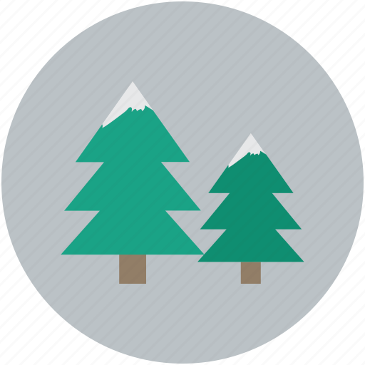fir trees, nature, snow for trees, trees icon