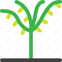 forest, grow, nature, oil, palm, plant, tree icon