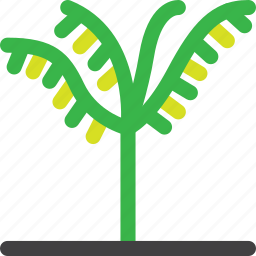 forest, grow, nature, oil, palm, tree, trees icon
