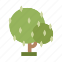 .svg, forest, jungle, nature, perennial, tree icon