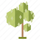 .svg, forest, infographic, nature, perennial, tree icon