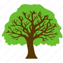 forest, oak tree, round tree, tree trunk, woods icon