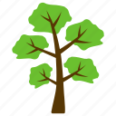 evergreen, forest, hangman's elm tree, nature, tree trunks icon