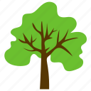 fruit tree, generic tree, spreading tree, sugarberry tree, woodland icon