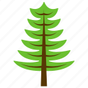 cypress tree, ecology, larch tree, larix tree, nature icon