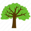 acacia tree, generic tree, greeness, spreading tree, tree icon