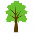 chestnut oak, chestnut tree, deciduous tree, shrubs, spreading trees icon