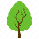 afghan pine, forest, generic tree, greenery, tree icon