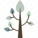 bonsai, spruce, tree, winter icon