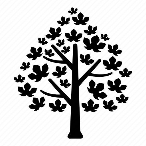 canada, leaves, maple, tree icon