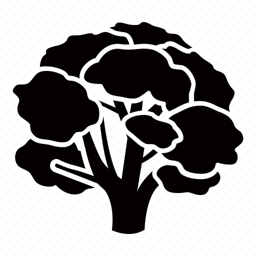 beech, botanical, broccoli, climbing, nature, park, tree icon