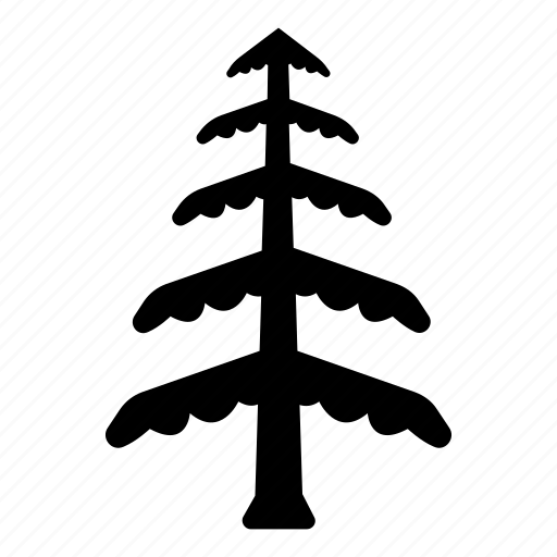 branches, cedar, evergreen, forestry, leaves, tree icon
