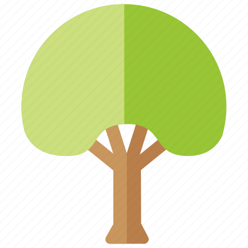 beech, deciduous, forestry, generic, park, plain, tree icon
