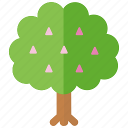 agriculture, chestnut, fruit, horticulture, nut, orchard, tree icon