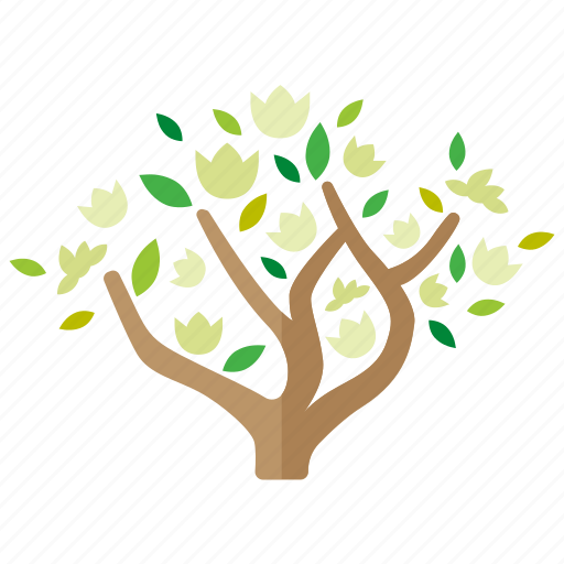 botany, branches, flowering, foliage, magnolia, spring, tree icon
