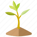 baby, botanical, growing, nursery, sapling, sprout, tree icon