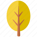 botanical, botany, foliage, forest, park, round, tree icon